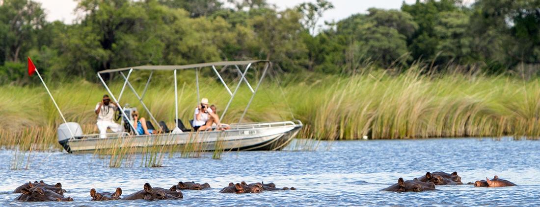 Boat Cruise in Delta