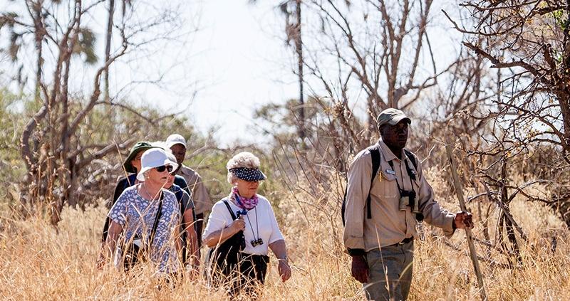 Walking Safaris at Chief's Island